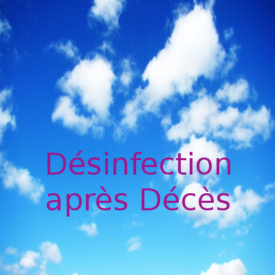 desinfection deces desinsectisation24
