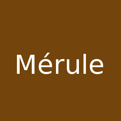 merule desinfection24